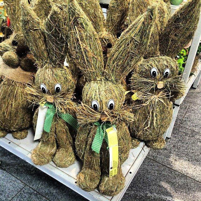 Oh, ist bald Ostern? #Deko #schmuck #ostern