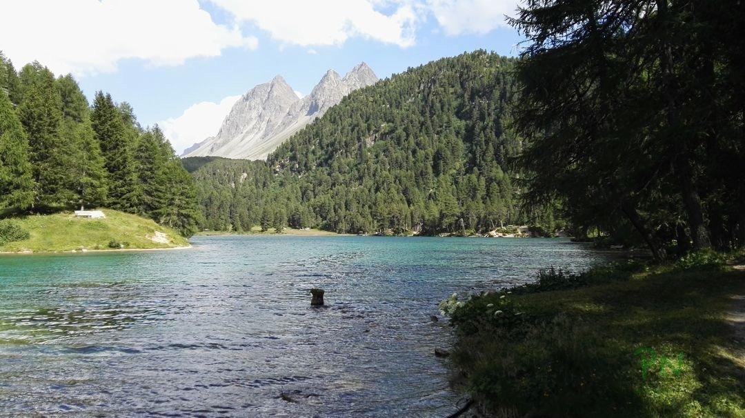 Ferien in Graubünden Filisur - Palpuognasee