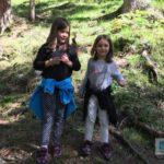 Auf dem Weg in den Wald, Pilze sammeln