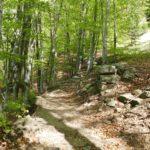 Spaziergang - kleine Wanderung in Rasa - Verdasio