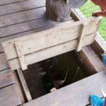 Direkter Zugang zu den Bären im Juraparc
